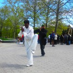 The 2012 Harlem Celebration of World Tai Chi & Qigong Day Goes Down on Saturday April 28th