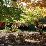 The Inwood Hill Park Harvest Festival In Pictures