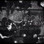 Monday Mood Music: Audubon - Riot For Kiko