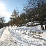 Snow Day Tomorrow @ Highbridge Park